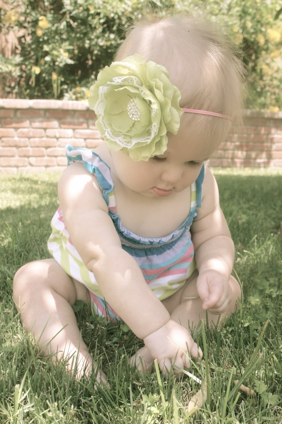 Grass & Sunshine